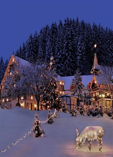Perfect Winter Lights Christmas night Beautiful
