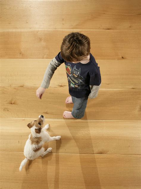 best hardwood floors for dogs which wood floor is best for dogs floorsave 7704