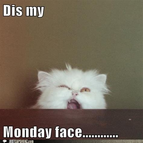 Dis Meme - dis my monday face pictures photos and images for facebook tumblr pinterest and twitter