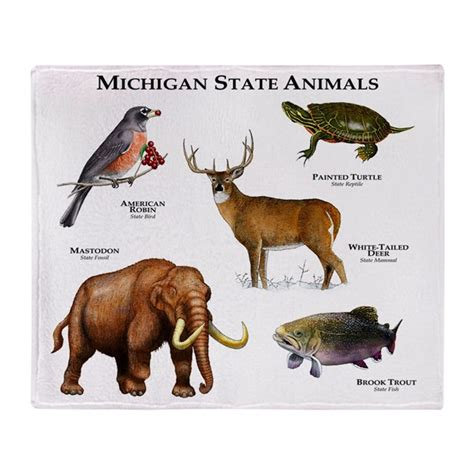 Michigan State Animals Throw Blanket By Wildlifearts2. Free Copy Credit Report Plumbers In Newnan Ga. Yahoo Coupon Code Domain St Boni Pet Hospital. Traditional Or Roth Ira Calculator. Best Mortgage Lead Companies. It Consultant Companies Surgical Team Members. How To Fax Over The Internet For Free. Best Place To Buy Replacement Windows. Top Ranked Business Schools Price Per Head