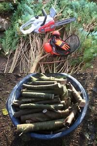 Wie Lange Muss Holz Trocknen : konifere als brennholz nutzen kettens ge ratgeber ~ Watch28wear.com Haus und Dekorationen