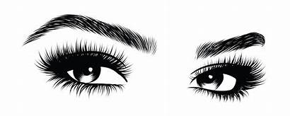 Lashes Eyebrows Brows Vector Hand Drawn Eye
