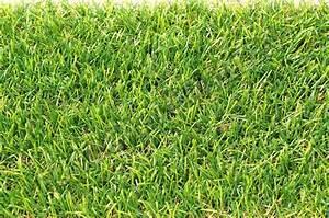 Pose Gazon Synthetique Sur Terre : pose pelouse synthtique sur terre cliquez with pose ~ Dailycaller-alerts.com Idées de Décoration