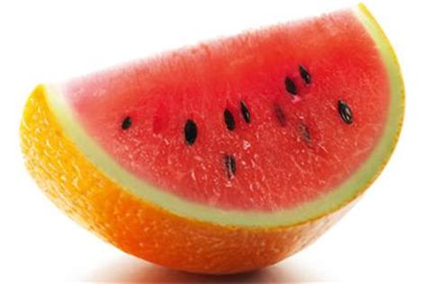 orange hybrid fruit reviews new tropicana orange watermelon and new galaxy a gift for you kerry cooks