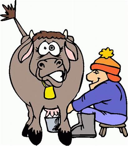 Clipart Cow Milking Cliparts Clip Library