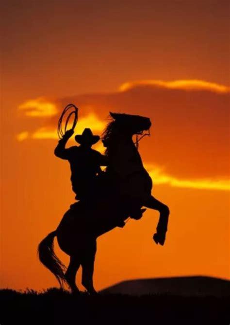 pin  durmus   atlar kovboylar guenbatimlari