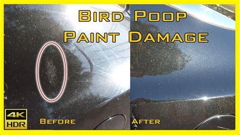 Concours Auto Salonidentifying Paint Damage