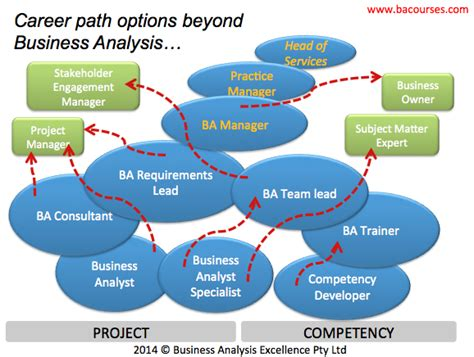 business analysis career progression options