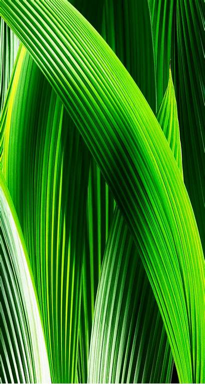 Iphone Ios Wallpapers Ipod Touch 2x