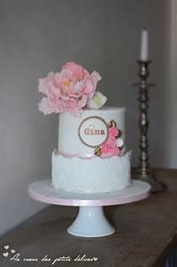 Theme Anniversaire Fille : g teau d 39 anniversaire b b fille 1 an birthday baby girl ~ Melissatoandfro.com Idées de Décoration