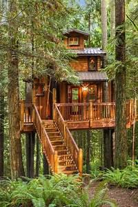 37, Luxury, Tree, Houses, You, U2019d, Like, To, Move, Into