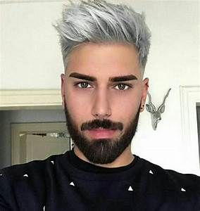 25+ best ideas about Silver hair men on Pinterest | Grey ...