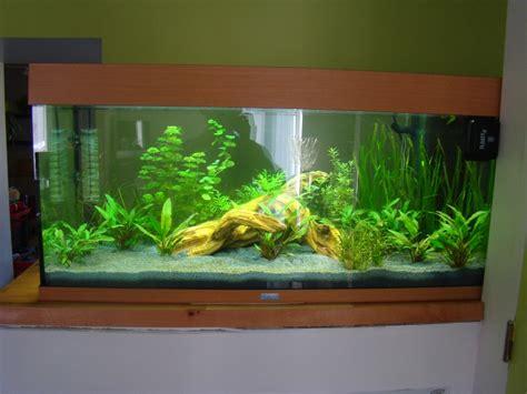 nouveau aquarium juwel 180