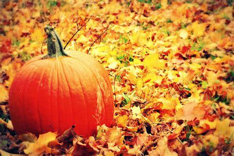 October Monthly Newsletter - Duke Center For Living at ...