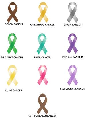 brain cancer awareness color ribbon awareness support