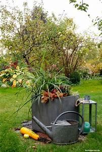 Kübel Bepflanzen Winterhart : das ganze jahr sch n k bel dauerhaft bepflanzen ~ Michelbontemps.com Haus und Dekorationen