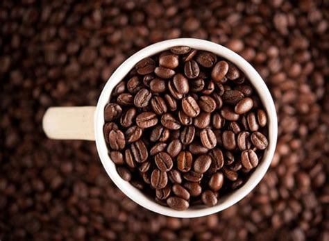 Only fools pay full price so here is how to order fresh, quality beans at discounted it will make choosing the perfect coffee beans easy, and your coffee will taste so much better. Freshly Roasted House Blend - Coffee Beans UK