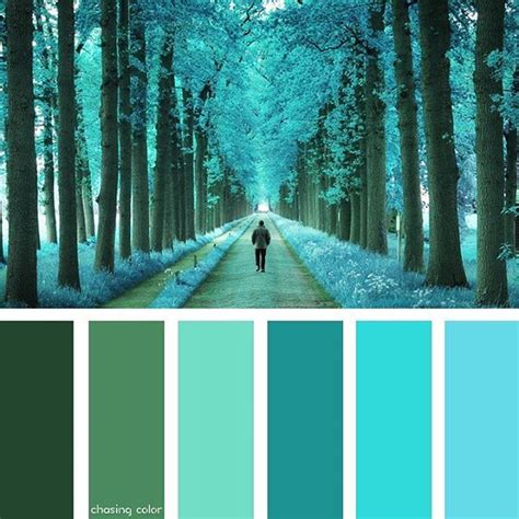 forest color 11 best forest color schemes images on