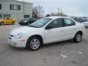 2005 Dodge Neon For Sale Carsforsale