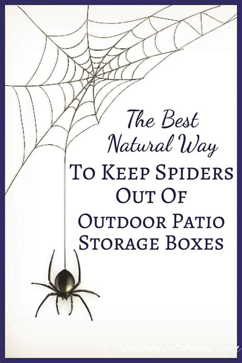 keep spiders out of house the best way to keep spiders out of patio storage 7624