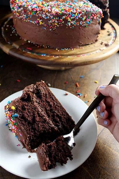 Cake Chocolate Birthday Wyldflour Classic Recipe Simple