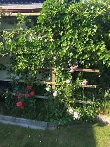 Holz Sichtschutz Für Garten : sichtschutz rankgitter aus holz f r den garten selber bauen hausbau blog ~ Sanjose-hotels-ca.com Haus und Dekorationen