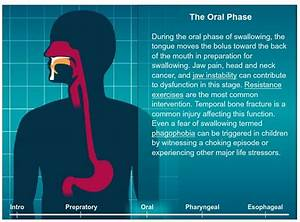91 Best Images About Dysphagia On Pinterest