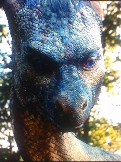 Eragon Saphira Solemn Dragon Fanpop Dragons Inheritance