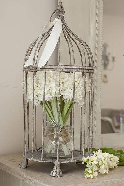 bird cage decoration 25 best ideas about bird cages decorated on