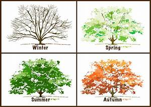 Beautiful, Free Clip Art for the 4 Seasons: The Four ...
