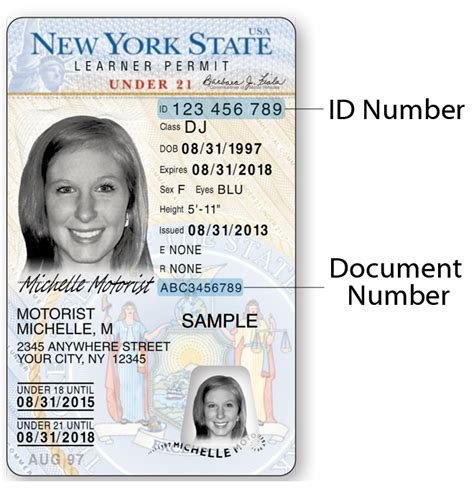Elcome to the new york department of state's division of licensing services (dls), which oversees the licensure, registration, and regulation of 35 occupations throughout the state. Sample Photo Documents   New York State DMV