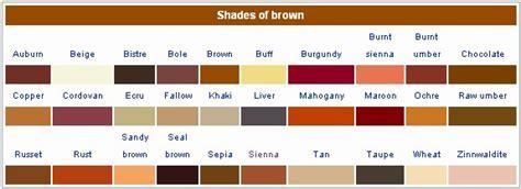 shade brown   sophie hairstyles