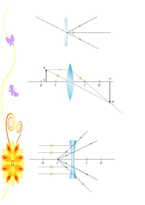 scientific illustration software  examples templates