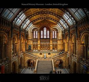 Natural History Museum - London, United Kingdom (HDR ...