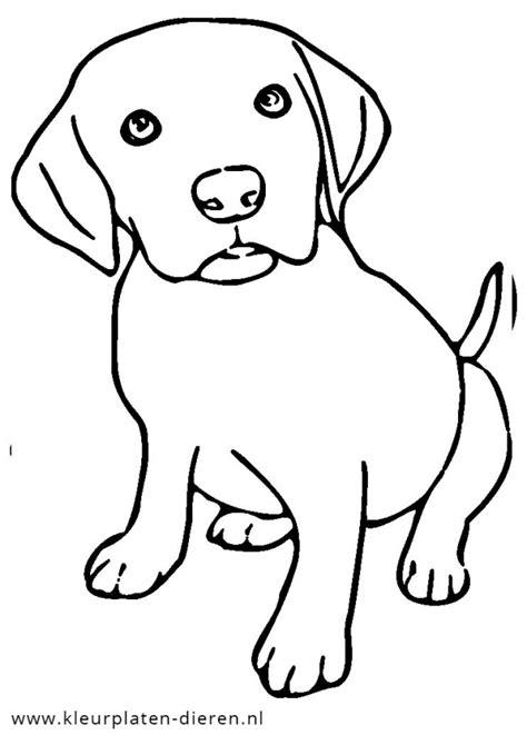 Dieren Kleurplaat Hond by Kleurplaat Puppy Kleurplaten Dierenkleurplaten Dieren