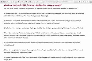 College application essay prompts catch 22 essay college application ...