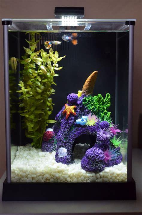 Fluval Chi Aquarium  Aquarium Fluval Spec De 10 Litres