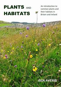 Plants And Habitats  Ben Averis