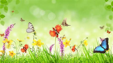 Primavera 4k Wallpapers fondos de pantalla primavera flores hierba mariposa
