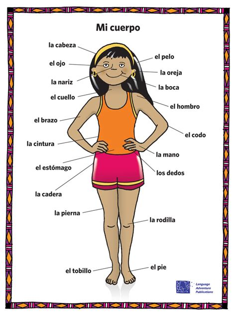 Image Result For The Human Body Worksheets In Spanishenglish  Spanish  Pinterest Spanish