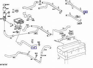 Engine Coolant Hose Identification