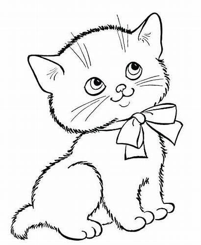 Kitten Coloring Pages Printable Sheet