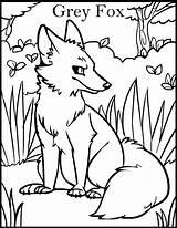 Wolf Coloring Grey Fox Printable Coloringpage Animal Deviantart sketch template