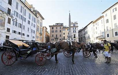 Horse Carriage Drawn Rome Rides History Travel