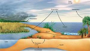 figure 36 6 the water cycle