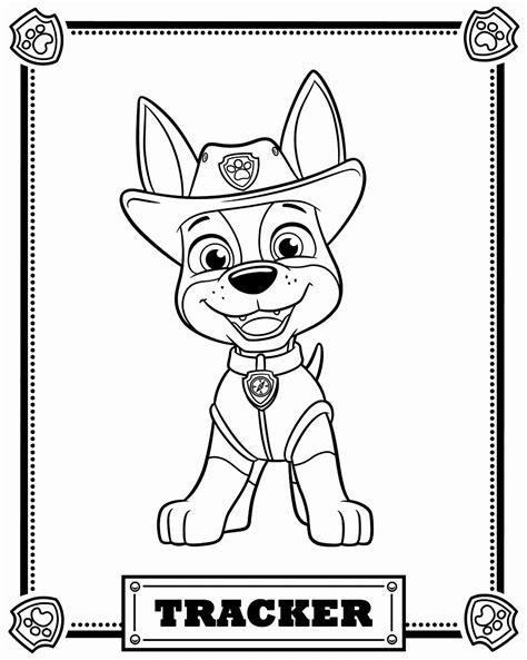 24 Paw Patrol Coloring Book in 2020 Paw patrol coloring