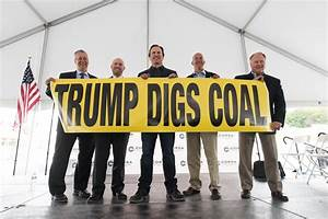 Donald Trump Has China to Thank for Coal Uptick   Time
