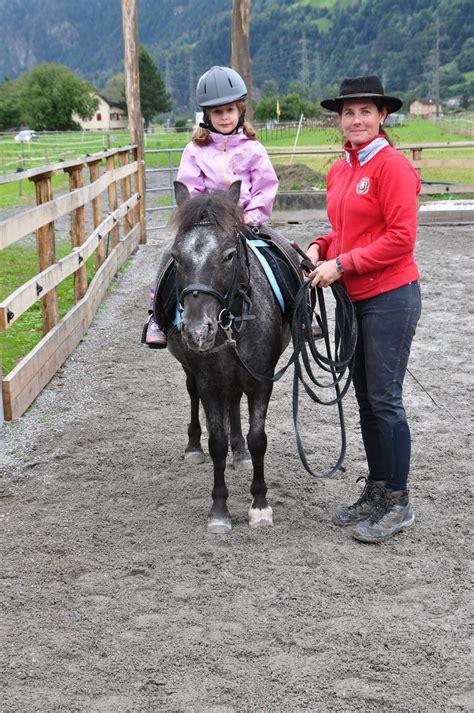 pferde training reiten lernen