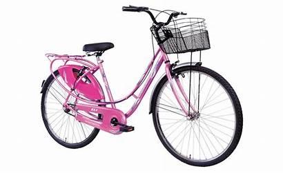Cycles Splash Ladybird Ladies Bicycle Cycle Lady