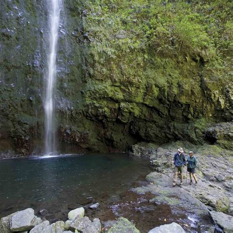 6 Things To Do In Madeira Like A Local Portugal